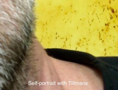 Looks on TILLMANS 2017 exhibition at Tate Modern London