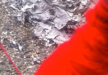 Il sentiero dei nidi di vespe, di Anahi Angela Mariotti